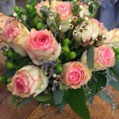 Esperance pink roses